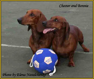 Chester and Bonnie